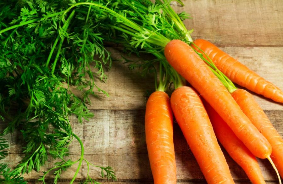 Optometrists Clinic Carrots and eye health in Edmonton Alberta